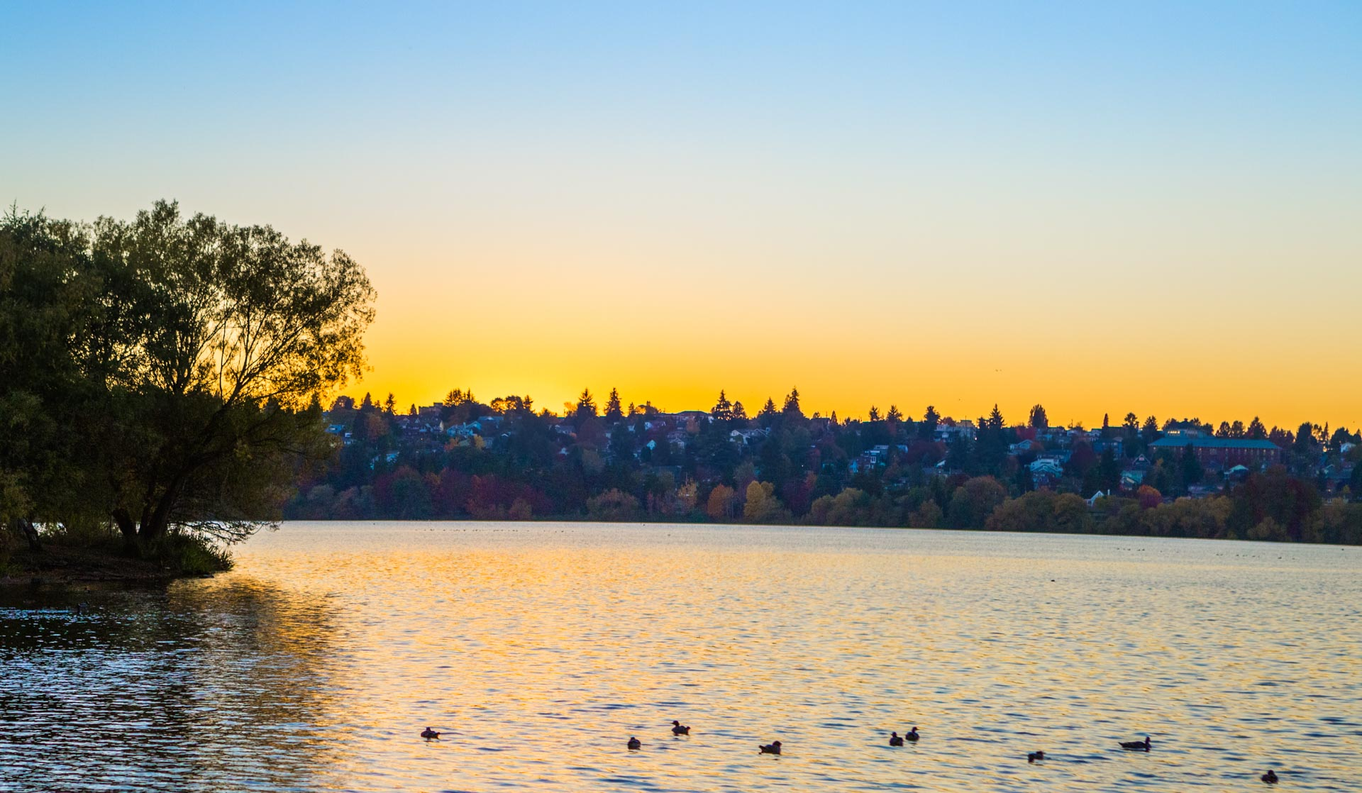 Seattle Naturopathic Medical Practice - Green Lake Natural